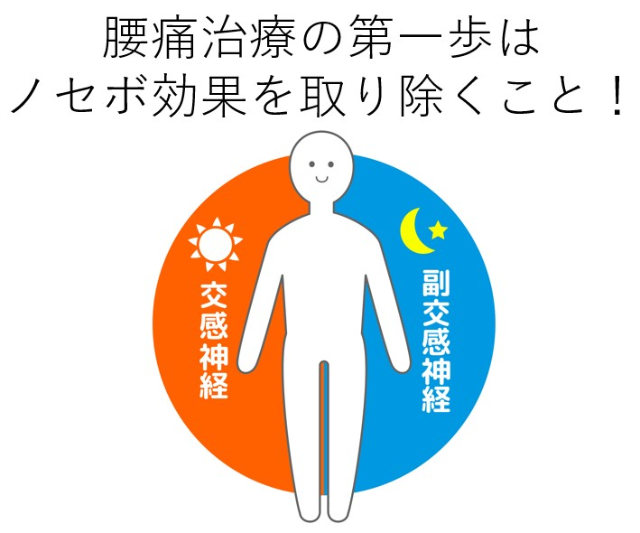 腰痛治療は交感神経と副交感神経でノセボ効果を取り除く